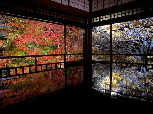 2泊3日!京都で紅葉狩り♪(2日目)
