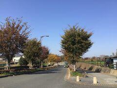 車椅子単独自操で行けます!/茅ヶ崎里山公園