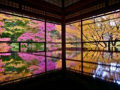 ずらし旅'20 晩秋の京都@一の傳*下鴨神社*瑠璃光院*いもぼう平野屋本家