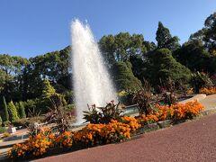京都府立植物園てくてく旅行!…ひとり旅編!