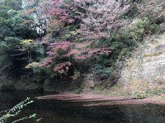 秋の勝浦のんびり旅 2日目午後~3日目
