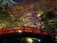 20201126-2 京都 北野天満宮、御土居の紅葉ライトアップ