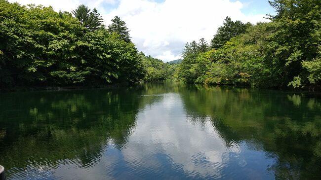 残暑の9月、秋を求めて軽井沢に行ってきました。<br />軽井沢を泊まりでゆっくり回ったのは初めて。高級別荘地にびっくり。お金持ち、いるとこにはいるものだな。