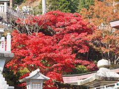紅葉の大山 こま参道でお豆腐料理