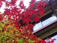 5歳子連れ青森【7】星野リゾート奥入瀬渓流ホテル~八甲田編