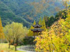 いちき串木野市の冠嶽の紅葉と黄葉。