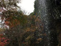 紅葉の袋田の滝と 月待の滝へ