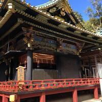 若干影の薄い静岡県静岡市でモスク・遺跡・東照宮を巡って来た