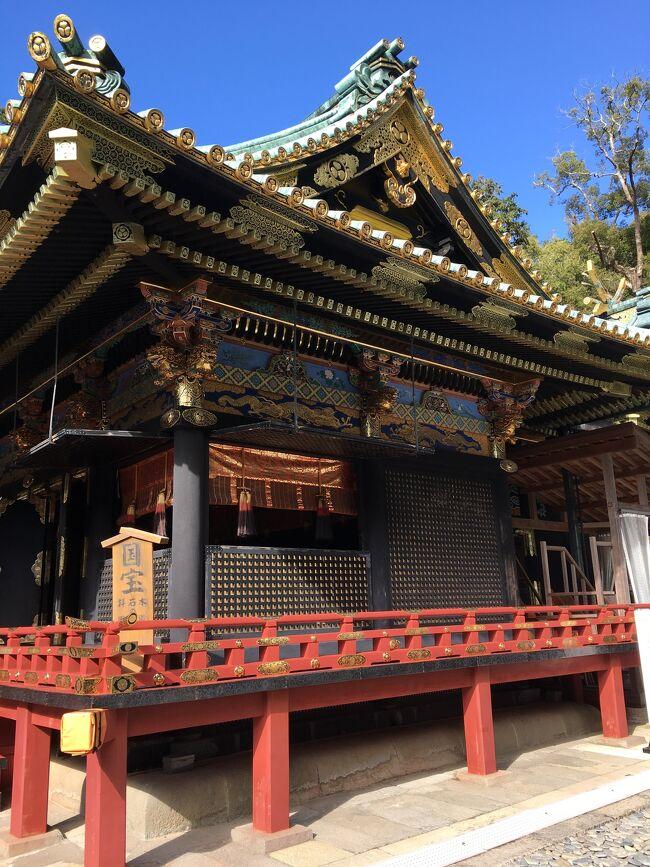 静岡県の県庁所在地でありながら県内で若干影の薄い静岡市を観光してみました。<br />クラフトビール醸造所、モスク、弥生時代遺跡、江戸時代の東照宮、さわやかと、観光客を楽しませる観光資源は全て揃っていて、大満足の時を過ごせました!