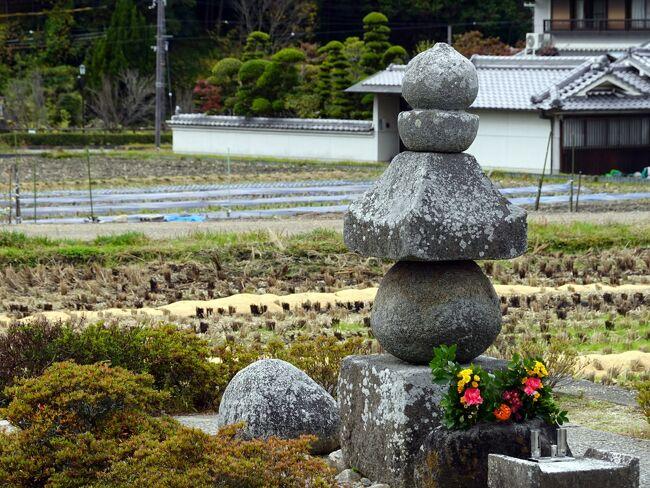 室生寺、談山神社と巡り、飛鳥に入りました。<br />飛鳥はあしかけ二日を掛けますが正味は5時間程。<br />先ずは飛鳥を代表する石舞台古墳、翌日は飛鳥大仏、橘寺等を回ります。<br /> 今夜の宿は奈良ホテル、夕食は菊水楼です。<br /> <br />   表紙は田圃に佇む通称曽我入鹿の首塚。<br />
