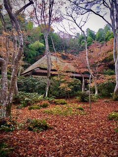 BANSHŪ IN 京都