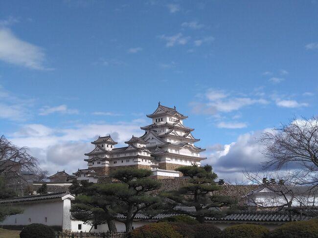 今回も備前に業務があったので、前日入りすることに。となれば、姫路城と日生のカキオコ食べないと!<br />姫路には何度か業務できていたものの、姫路城には一度も来たことがありませんでした。GOTOでそれなりに混んではいましたが、天守閣の中まで入れて、ゆっくり見学できました。<br />その後、備前の日生に向かいました。11月からカキがオープン?採れたてのカキでカキオコが食べられます。せっかくなので、ソースでカキの美味しさを逃すまいと、醤油と山椒で食べられるもりしたに行きました。鉄板の席で食べます。ふんわりしたカキオコを食べていると、次のお客さんのカキオコ焼き始めました。う~ん、いい味が!<br />すぐ近くの楯越山には、すぐ近くまで車で行けます。駐車場に車を止めて、階段をちょっと登れば、遠く小豆島に向かうフェリーと瀬戸内の島々が一望できました。