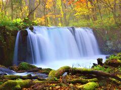 美しい紅葉と渓流を眺めながら 癒しのハイキング