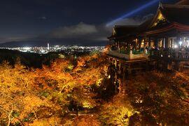 紅葉の京都へ「GOTO] ①醍醐寺、南禅寺、清水寺ライトアップ