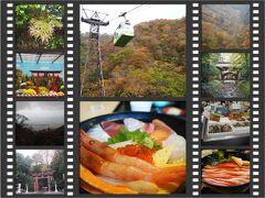 初めての新潟グルメ旅 ③紅葉の弥彦神社と寺泊で海鮮丼