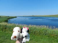 PEIをドライブ/輝く湖水・ケンジントンなど◆ボストン・ナイアガラ・プリンスエドワードの旅《その17》