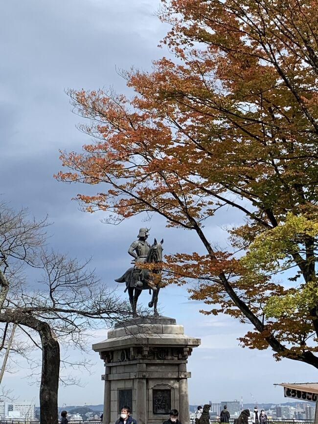 2020年春に予定していた松島への家族旅行<br />コロナで行けなかったけど<br />10月に解禁になったので<br />Gotoトラベルを使って行ってきました<br /><br />両親も参加なので、コロナ対策にも気を配りつつ<br />1泊2日で松島と仙台を弾丸でゆる~く?巡って<br /><br />この旅から<br />日本城郭協会が定めた日本全国の名城を巡ってスタンプを集める<br />「日本100名城」と「続日本100名城」巡りデビュー<br /><br />移動は自家用車<br />NEXCO東日本 ドラ割 東北観光フリーパス2日券 6100円を利用<br />東北自動車道は白河IC<br />常磐自動車はいわき勿来ICから<br />南東北エリアが乗り降り自由<br />途中で寄り道するならお得でした<br /><br />お宿は 松島センチュリーホテル<br /><br />1日目<br />白石城  続日本100名城 1城目<br />松島  <br />西行戻りの松公園、松島湾遊覧船、瑞巌寺、五大堂<br /><br />2日目<br />多賀城 日本100名城  1城目<br />仙台城 日本100名城 2城目