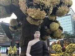 秋のソウルお祭り巡り