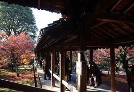 GOTOトラベル京都の旅・・東福寺の「紅葉の通天橋と八相の庭」を訪ねます。
