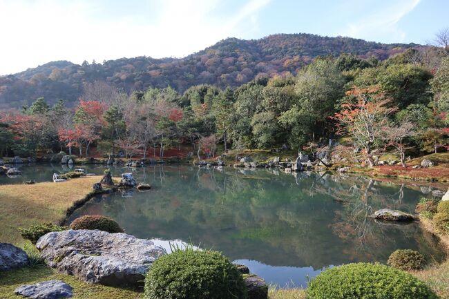 GOTOトラベル京都の旅・・紅葉の嵐山が借景「曹源池庭園」が美しい天龍寺を訪ねます。