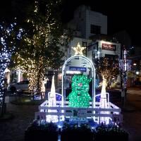 E DEC 2020  初冬・・・・・⑤小田原ステイ