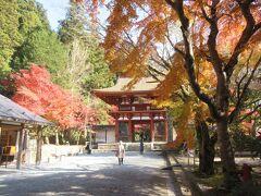 奈良の寺社と仏像をめぐる旅、2日目 紅葉が美しい室生寺、長谷寺へ
