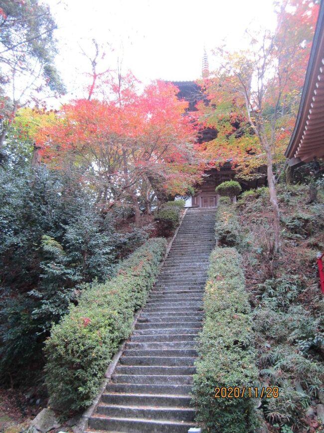 街歩き17・西条  西山興隆寺