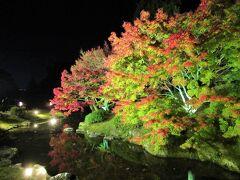 四国③&⑧ 栗林公園の紅葉・秋のライトアップ・花園亭の朝がゆ 2020/11/25(水)