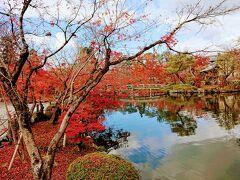 紅葉の京都ずらし旅 2日目 銀閣寺から祇園四条までてくてくお寺巡り