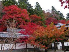 2019年11月 滋賀県・湖東 その2 永源寺の紅葉