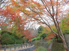 根来寺もみじ谷公園の紅葉
