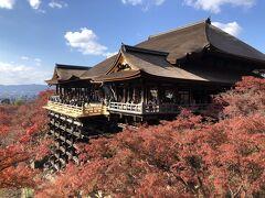 GO TOトラベルを利用して 京都へ