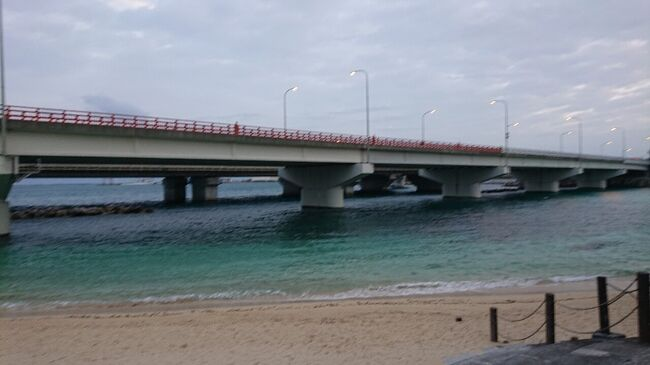 用事で沖縄那覇に三泊四日の滞在しました。<br />各日の昼間に用事を済まし、早朝と夜はプライベートで滞在を楽しみました。3つに分けて旅行記で紹介します。<br />プライベートのスケジュールは、次のとおりです。<br />1日目(11月30日)<br />11.30<br />16:41 ホテルチェックイン<br />18:05~ 外出<br />18:10 ビーチ<br />18:25 波上宮(なみのうえぐう)<br />18:50~19:00 旭ヶ丘公園<br />19:30 国際通り<br />19:55~20:35 ゆうなんぎい<br />20:40~21:35 ぱいかじ<br />~21:50 買い物<br />~23:00 ホテル着<br /><br />---以下は、次回で紹介----------<br />2日目(12月1日)<br />06:50 ランニング<br />波の上ビーチ、波の上公園<br />06:55 波の上うみそら公園、<br />07:05 護国寺、波上宮<br />07:10 <br />07:25 朝食 <br />17:25 ホテルチェックイン<br />18:45 外出<br />19:20~20:20 夕食 サムズセーラーイン<br />20:35 ドンキホーテ 国際通り<br />21:22 キッドノウス<br />22:30 ドンキホーテ<br />22:45 ホテル着<br /><br />3日目(12月2日)<br />06:15 ジム<br />06:50~07:20 ランニング<br />波上宮、石碑<br />08:15 チェックアウト<br />16:15 知念の景色<br />17:30 ホテルチェックイン<br />19:00~ 外出<br />19:15~19:35 リウボウ<br />19:55 ドンキホーテ<br />20:05~ 市場本通り<br />20:07 第一牧志公設市場<br />20:20~21:00 どらえもん<br />21:20 ホテル<br />22:00~23:00 フィットネスクラブ<br /><br />4日目(12月3日)<br />07:15~07:55 朝食<br />08:15 チェックアウト<br />15:45 那覇空港<br />16:00~16:20 バス移動(那覇空港→松尾)<br />16:30~16:45 第一牧志公設市場<br />17:40~18:30 まちぐぁ食堂 道頓堀<br />(18:35 サンシーン)<br />18:40~19:15 ゴリラパンチ<br />(19:22 あげ萬 (鳥人間))<br />19:41~19:57 ゆいレール移動(美栄橋→那覇空港)<br />20:45~22:55 (那覇空港→羽田空港)<br /><br /><br /><br />
