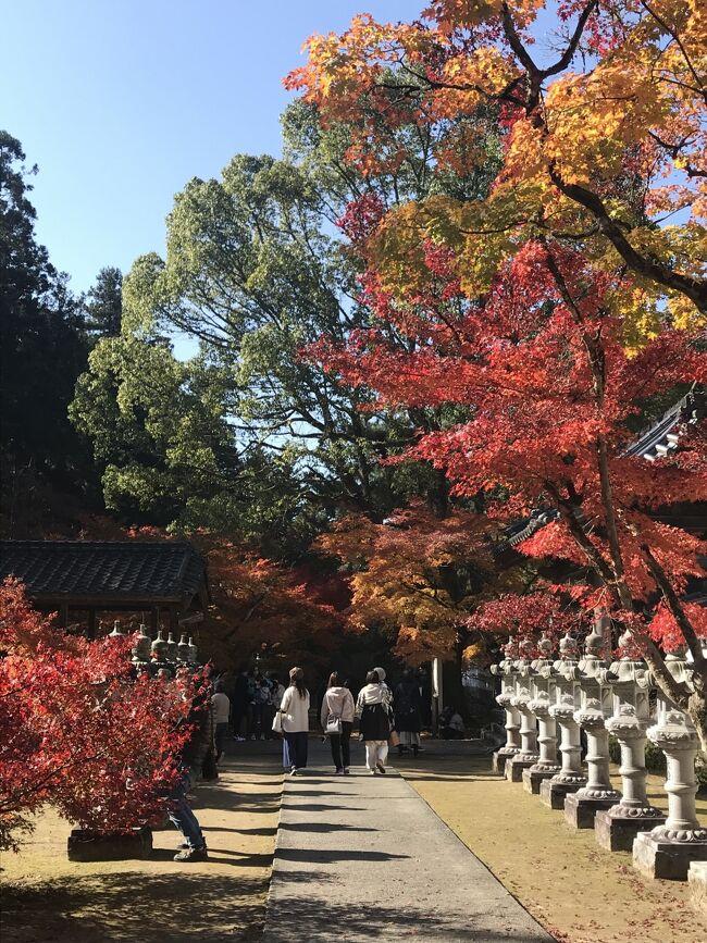 広島旅2日目です。<br />プランの段階で。1日目で、行きたかった宮島と広島平和記念資料館へ行くので、2日目はどうしょうか……。ネットで偶然 佛通寺の紅葉の写真を見て、ここに行こうと決めました。が、中国地方不案内なので、三原観光タクシーさんを利用することにしまして、電話予約(ネット予約はできなかった)。広島から三原へ行ってタクシーでまわって、また広島へ戻ってくるざっくりプランだったのです。しかし、三原から広島空港へバスで行けることが現地到着後わかりました。ちゃんと事前に調べなくてはいけませんね(#^^#)<br /><br />日程<br />1日目:羽田空港→広島空港 リムジンバスで広島駅へ。<br />    JR広島駅→宮島口→宮島 厳島神社・豊国神社<br />    宮島→宮島口→JR広島駅バスで紙屋町 リーガロイヤルホテル広島チェックイン<br />    平和記念資料館 長田屋<br />2日目:新幹線で三原へ。三原観光タクシーにて佛通寺・御調八幡宮。<br />    みっちゃんで昼食 三原散策<br />    三原→広島空港 広島空港→羽田空港<br />ホテルは一休ドットコムよりGO TO利用です。