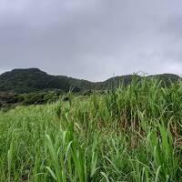 北東の季節風による時化が続き波照間島に渡船できず石垣島に滞在・・・