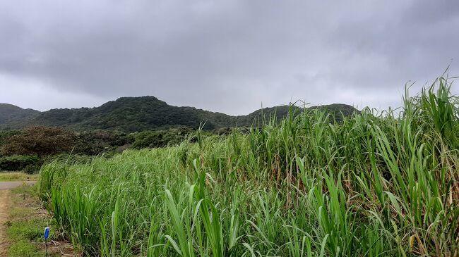 3泊で5年ぶりに石垣島へとGoToトラベル<br /><br />発つ一週間前の天気は晴れ続きの石垣島<br /><br />しかし旅の週初めから天気がくずれ始め石垣島~波照間島への航路欠航が続き始めていました。<br /><br />「週末は、大丈夫だろうか?」とやきもきしながら旅行日当日、やはり天気予報ではくずれています。<br /><br />しかし、島の天気予報は雨でも晴れることもあるし波は穏やかになるかと楽観視しての始まりでした。<br /><br />ところが3泊したのですが朝一番の船は出ても帰り夕方は欠航ということで今回残念ですが「波照間島」に渡ることができませんでした。<br /><br />冬の天気のはしりで、大陸性高気圧の影響による北東の季節風が吹きこれから春までこのような天気が続き八重山諸島はオフシーズンになってしまいました。<br /><br />残念ですが今回のブログは、見どころ無しです。<br />