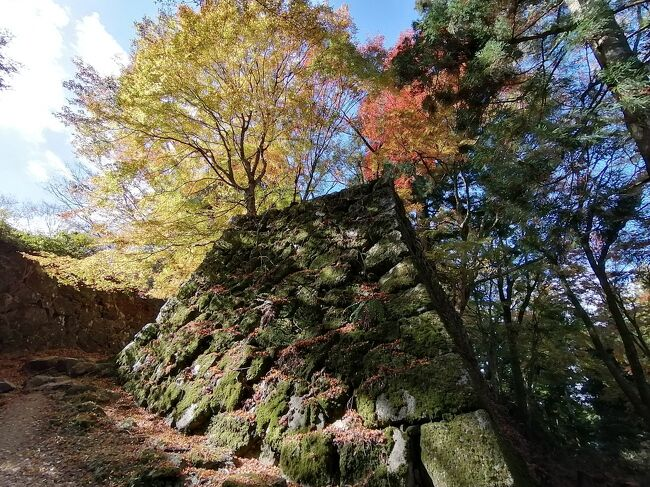 GoToトラベルを使用して、京都・奈良の紅葉を見に9泊10日で行ってきました。ついでに周辺にある日本100名城の高取城、千早城、二条城、篠山城、竹田城の5城をまわってきました。紅葉は出発日に降った雨や風でほぼ終わりになっていて紅葉のはずれ年な感じで残念でしたが、天気は良い日が多く楽しめました。<br /><br />★旅行記5のルート<br />遊山ゲストハウス→近鉄奈良駅→壺阪山駅→土佐街道→宗泉寺→高取城(猿石→二ノ門跡→大手門跡)<br /><br />1.京都駅周辺イルミネーション<br />2.奈良市内さんぽ(奈良公園~東大寺~奈良公園)<br />3.奈良グルメ(春日荷茶屋~天極堂の葛もち~おちゃのこのかき氷)<br />4.奈良 談山神社の紅葉&ライトアップ<br />5.奈良 高取城①(土佐街道~宗泉寺~猿石~二ノ門跡~大手門跡まで)←★今ここ<br />6.奈良 高取城②(二ノ丸~本丸~五百羅漢~壷阪寺)<br />7.大阪 千早城&金剛山麓まつまさのしいたけうどん<br />8.奈良 ほうせき箱のかき氷~よつばカフェ~麺闘庵<br />10.京都 京都駅大階段イルミネーション<br />11.京都 パンとエスプレッソと嵐山庭園~嵐山嵯峨野さんぽ~ステーキおおつか<br />12.京都 嵯峨野トロッコ列車のリッチ号に乗車<br />13.京都 永観堂紅葉ライトップ&和楽庵宿泊<br />14.京都 京都 南禅寺~永観堂~金戒光明寺~真如堂<br />15.京都 祇園グルメ(喫茶ソワレ~にしんそば松葉~壹銭洋食)<br />16.京都 知恩院 秋のライトアップ<br />17.京都 フルーツパーラーヤオイソ&二条城&京都御所<br />18.京都 出町ふたばの名代豆餅&下鴨神社&加茂みたらし茶屋<br />19.兵庫 篠山城&丹波篠山郷土料理懐のぼたん鍋<br />20.兵庫 姫路 カフェ・ド・ムッシュのアーモンドトースト<br />21.兵庫 雨の竹田城跡<br />22.兵庫 竹田さんぽ~姫路(まねきのえきそば)<br />23.京都 東寺~ミスター・ギョーザ<br />24.京都 宇治さんぽ①(中村藤吉本店~平等院鳳凰堂)<br />25.京都 宇治さんぽ②(宇治神社~興聖寺~宇治上神社)<br />26.京都 伏見稲荷大社①(楼門~本殿~千本鳥居~稲荷山山頂 一ノ峰まで)<br />27.京都 伏見稲荷大社② ライトアップの伏見稲荷大社~土井志ば漬本舗~東京へ