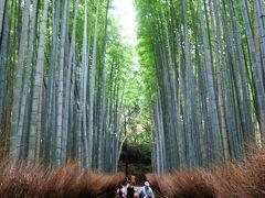 京都旅行2020Nov①嵐山散策