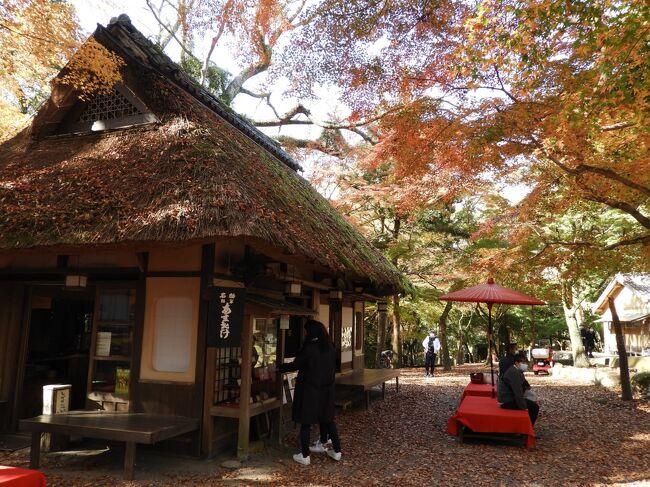 JTBの「旅物語」バスツアーで滋賀・京都・奈良の紅葉バスツアー<br />3日目は奈良公園周辺散策後、談山神社・室生寺で紅葉を眺めました。<br />こんなに奥深いところまで紅葉見物に訪れているとは(私たちもそうですが)驚きです。<br />