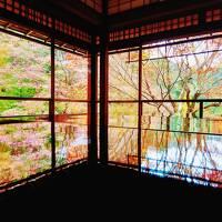 恒例!カニを食べに行こう城崎温泉。そして紅葉狩り京都観光。(2)京都梅小路公園と瑠璃光院