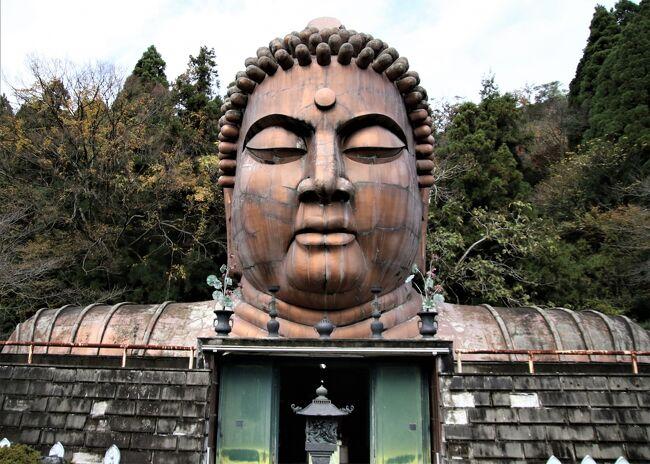 ハニベ巌窟院<br /><br />高さ15mの大仏様の頭が正面にド~ンとそびえる「ハニベ巌窟院」。初代院主の彫塑家・都賀田勇馬氏が、石切り場だった洞窟をアトリエとして作品を制作したことから始まり、昭和26年に設立されました。大仏様の頭、150mもの長さを誇る地獄絵巻の洞窟、おどろおどろしい世界にびっくり。