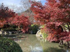 GoTo 奈良 ⑦ 東寺