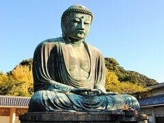 県内旅行で鎌倉から葉山へ。①早朝でまだ人がいない高徳院へ。