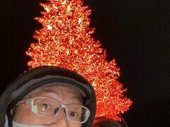 2020.12GoToトラベルで函館旅行①五稜郭は昼でいい