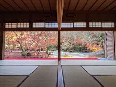 【京都】晩秋の京都~②圓光寺、建仁寺
