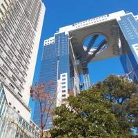 ウェスティンホテル大阪・クラブフロア最上階に宿泊【Marriott Bonvoyプラチャレ宿泊記・2泊目】