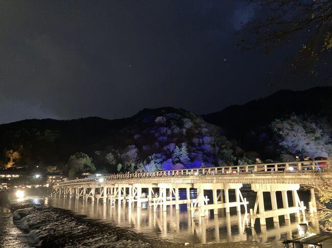 嵯峨・嵐山地域では平成17年(2005)12月からはじまった京都・花灯路。近くに住んでいますが、寒い時期なので今まで一度も行ったことがありませんでした。この時期にしては暖かかった週末、用事のついでに出かけてみました。<br /><br />京都・嵐山花灯路(2020年の開催期間:12月11日~20日)<br />https://hanatouro.kyoto.travel/arashiyama/index.html