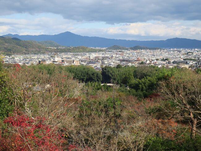 2020 「THE HIRAMATSU  京都」に泊まって晩秋の古都めぐり♪ 2日目 嵐山