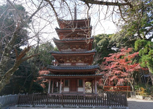 甥っ子のともちゃんと「おうちの中のだいぶつ」(東大寺)を見に行く旅。2日目はママ(妹)がずっと行きたがっていた浄瑠璃寺で、美人の吉祥天様にお会いしましたが、そこからの予定はまったく決まっていません・・・<br />浄瑠璃寺の駐車場に戻る手前(バス停)で見かけたのが、「京都 南山城国宝巡礼」のポスター。自称「仏像ガール」の妹とは、奈良や京都だけでなく湖北や若狭、近江、甲賀など美仏巡礼してきましたが、南山城は未踏の地、これは行くしかありません!!浄瑠璃寺から一番近い海住山寺まで6km程ということで向かいます。
