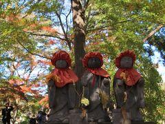 九品仏浄真寺の紅葉など 2020年11月